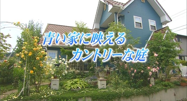 素敵にガーデニングライフ 青い家に映えるカントリーな庭