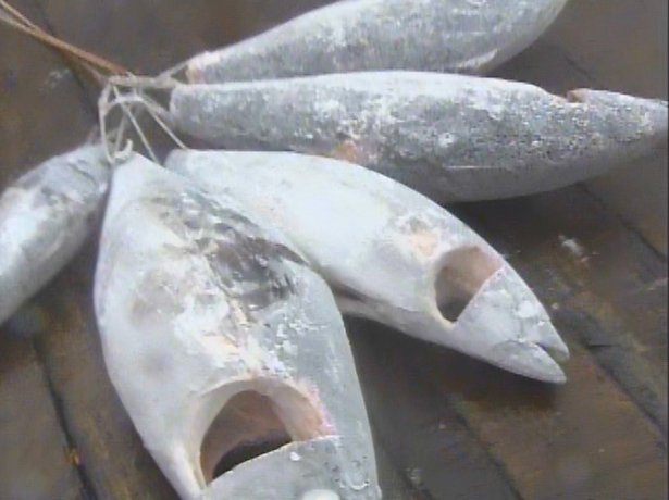 NHK スペシャル マグロが食卓から消える? 世界の魚争奪戦 中国